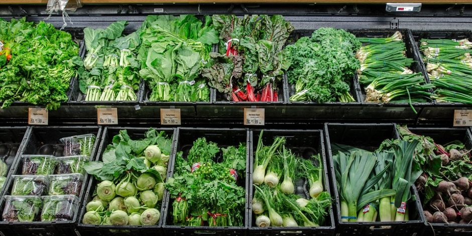 Plant-Based Resources